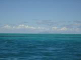 Horizon tropical