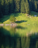 Fototapeta Las - Landscape in the Switzerland. Forest and lake. Reflection on the water surface. Natural lndscape at the summer time. Switzerland - image © Biletskiy Evgeniy