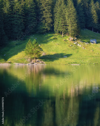 Landscape in the Switzerland. Forest and lake. Reflection on the water surface. Natural lndscape at the summer time. Switzerland - image - 244407573