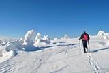 Turysta ana zimowym szlaku - 244410721