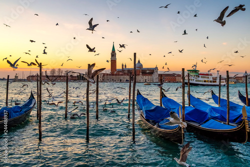 Sunrise over St Giorgio Maggiore and Birds over the Grand Canal, Venice, Italy © vlamus