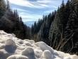 Austrian Winter