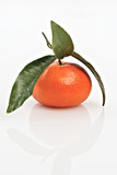 mandarino con foglia primo piano