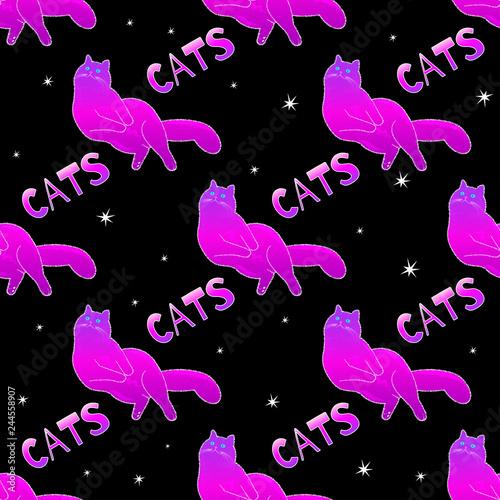 fototapeta na ścianę Magic cat pattern