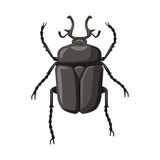 Vector design of insect and fly icon. Collection of insect and element stock vector illustration.