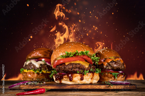 Tasty burger with french fries and fire. - 244611927