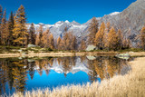 Adamello Brenta natural park, San Giuliano Lakes, Trentino Alto Adige, Italy
