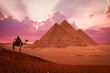 pyramid giza egypt sunset phantasy with camels and bedouin
