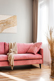 Beige blanket on pink couch in bright living room interior - 244686164