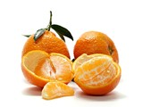 0621 Several tangerines with stems and leaves one open with split single fruit.