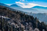 Fototapeta Na ścianę - Schwarzwald nahe Oberharmersbach © midgardson