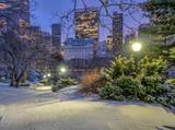 Fototapeta Fototapeta Nowy Jork - Central Park, New York City in winter © John Anderson
