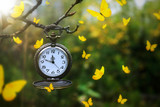 Yellow butterflies flying around an antique pocket watch hanging from a tree branch