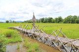 Fototapeta Bambus - Wooden bamboo bridge on rice paddy field. © zilvergolf