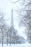 Fototapeta Wieża Eiffla - Winter in Paris, Eiffel tower coverd with snow. France © Inna