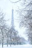 Fototapeta Fototapety z wieżą Eiffla - Winter in Paris, Eiffel tower coverd with snow. France © Inna