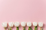 White tulip flowers on a pastel pink background - 244970154