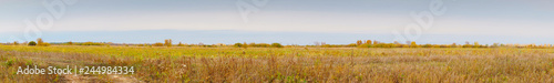 Panorama of a large autumn meadow on cloudy day - 244984334