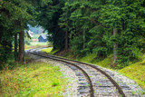 Fototapeta Natura - wavy log railway tracks in wet green forest with fresh meadows © Martins Vanags