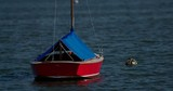 Nice red sailboat tied to buoy bobs slowly in a blue water harbor in slow motion. No markings. - 245049159