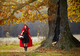 Red riding hood in the forest - 245098153