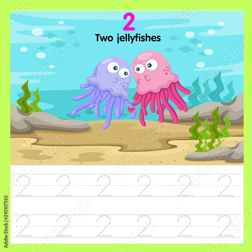 Illustrator of worksheet of two jellyfishes