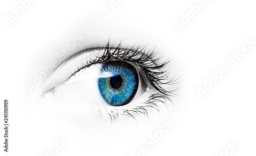 Auge - 245110989