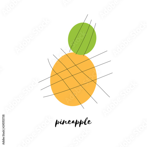 Abstract pineapple vector illustration - 245113758