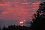 Fototapeta  - The sunset, red and orange sky © E-lona