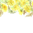 Floral frame. Yellow flowers border. Floral background with dandelions.