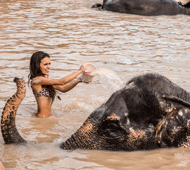 Girl washing an elephant.