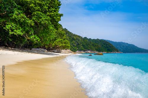 Turtle Beach, Perhentian Islands, Terengganu, Malaysia - 245197123