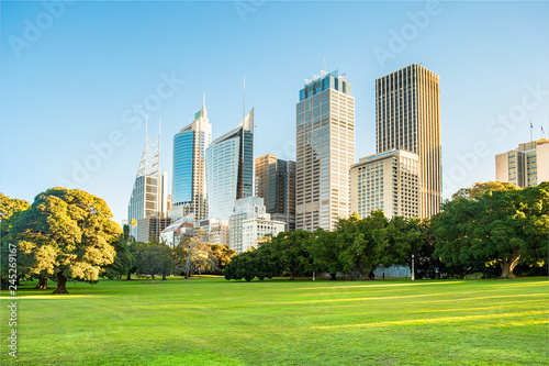 Sydney city high rise buildings with grass parkland in foreground.
