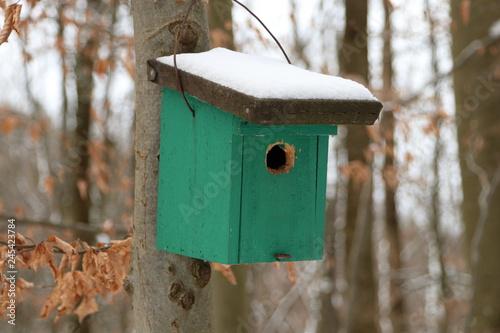 Leinwanddruck Bild Tierschutz im Wald