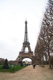 Fototapeta Fototapety z wieżą Eiffla - View at Eiffel Tower from the Champ de Mars (Field of Mars) © k_samurkas