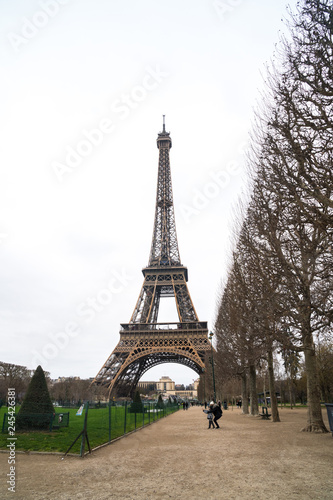View at Eiffel Tower from the Champ de Mars (Field of Mars) - 245426381