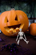 Halloween still life with carved pumpkin lantern and plastic toy skeleton