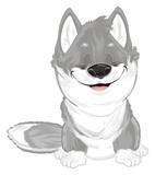 wolf, wolf cub, animal, predator, jackal, dog, zoo, small, gray, puppy, sleep