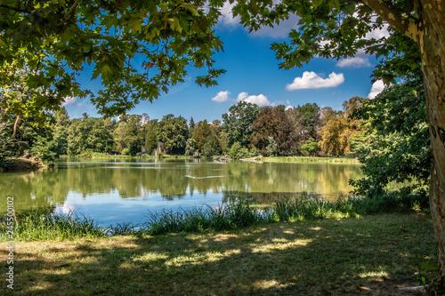 Paisaje con lago y árboles