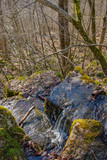 Waterfall in the forest at spring
