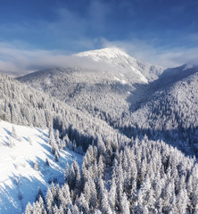 Aerial view at the winter mountains. Forest from air. Winter landscape from a drone. Snowy landscape. Aerial photography