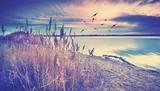 einsame Winterzeit am See - 245754339
