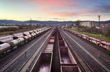 Cargo train platform at sunset with container - 245878760