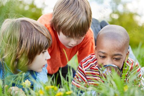 Kinder als Forscher mit Lupe betrachten eine Blume - 245884155