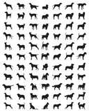 Different black silhouettes of dogs on a white background