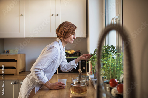Leinwandbild Motiv A young woman with cup of coffee standing indoors in kitchen, looking at plant.