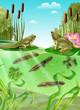 Frog Life Cycle Realistic Image