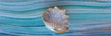 decorative sea shell on sea tile background - 246165910