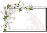 spring tree blossoming branches in simple frame