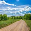 Green meadow landscape - 246251795